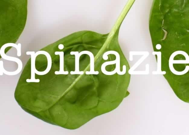 spinazie vers