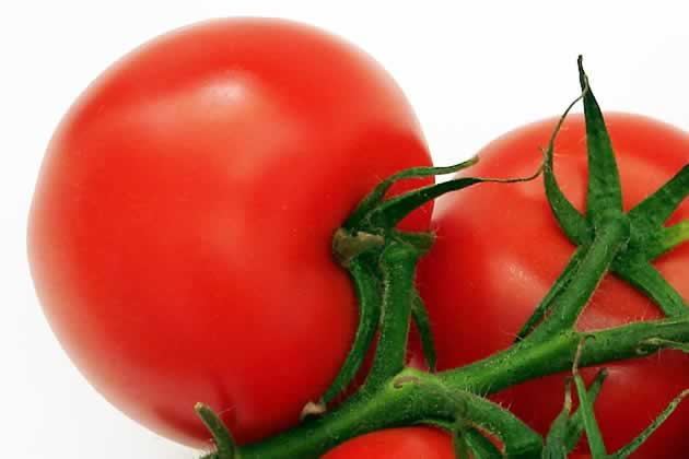 tomaten